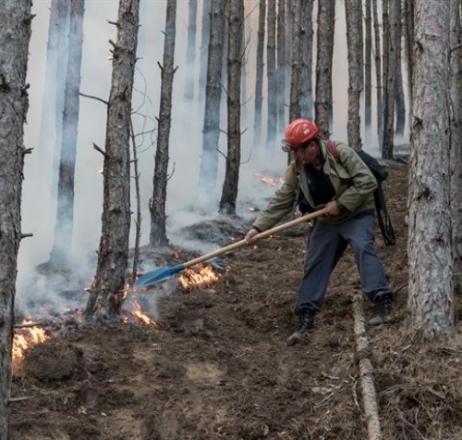 Парични премии за 470 смели горски