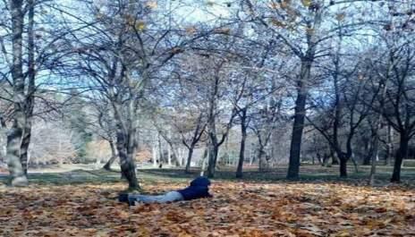 (снимки) Активни в златна есен